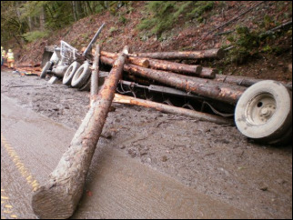 Log truck driver, small dog killed in crash on Hwy 126