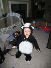Our little skunk