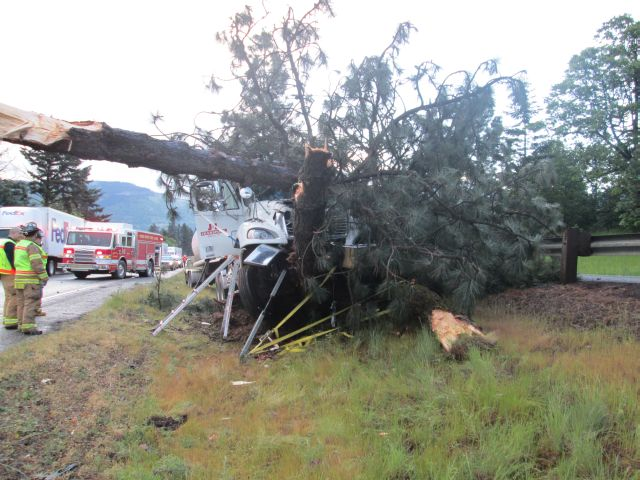 Driver found dead after big rig hits tree on interstate median