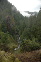 N Umpqua River from Tokatee Falls