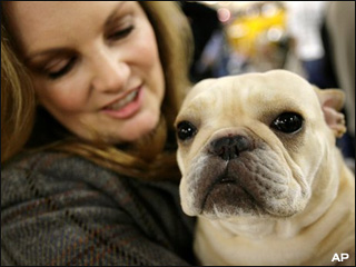 Patty Hearst, bulldog win award at Westminster dog show