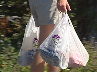 Ban on plastic bags wins key support 
