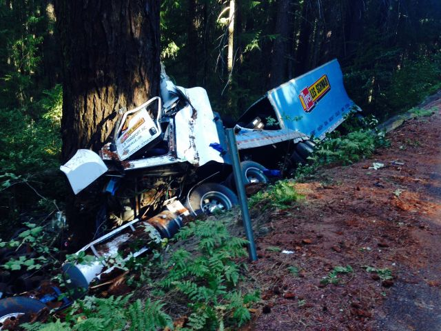 Trucker seriously injured in head-on crash into tree
