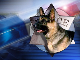 Supreme Court: Prosecutors must prove drug dogs reliable