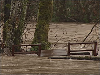Rivers rise with flood waters as rain falls