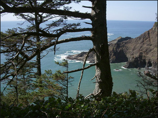 Oregon Coast tourism: Boom or bust in 2009?