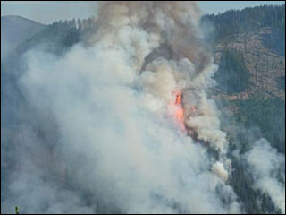 Tumblebug fire quadruples in size overnight
