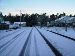 Before Thanksgiving Snowfall Florence,OR