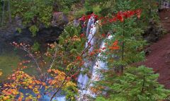 Fall color at Koosah Falls