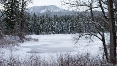 Frozen Fish Lake