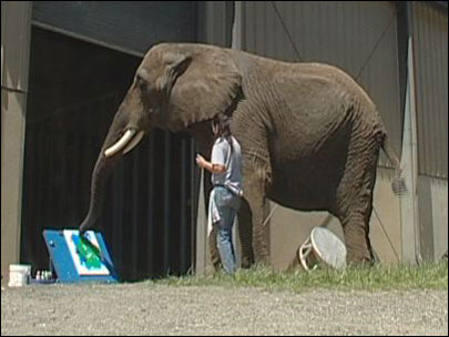 Artistic elephants donate paintings to benefit species