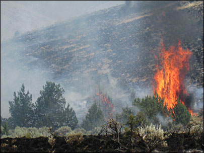 Oregon wildfire burns 4,000 acres