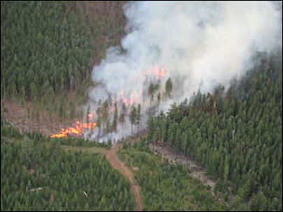 Forest fire allowed to burn to fight future fires