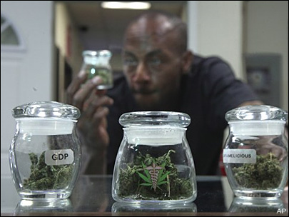 Calif. voters reject legalization of marijuana
