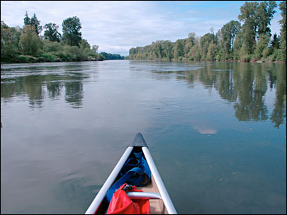 $150M deal to protect Willamette River wildlife habitat