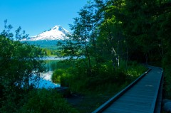 Mt. Hood over Trillium Lake