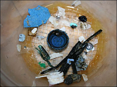 OSU prof: Ocean garbage patch 'grossly exaggerated'