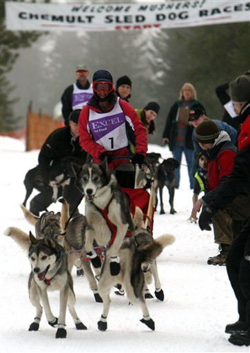 Chemult Sled Dog Races