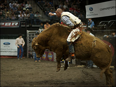 Inside the world of professional bull riding