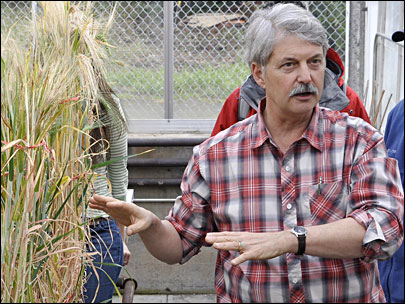 OSU maps barley genome in search of hardier crop