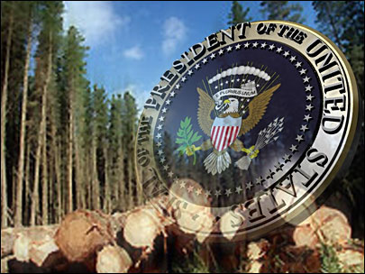 County timber payments stay alive in Congress