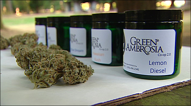 Seattle co-op will deliver medical marijuana