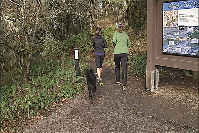 Cougars and bears on Ridgeline Trail: 'I actually ran with a stick'