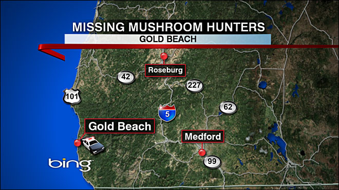 Missing Mushroom Pickers