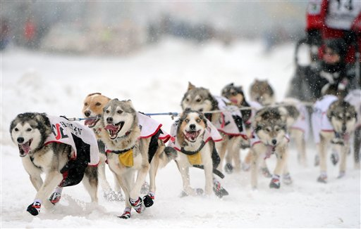 APTOPIX Iditarod