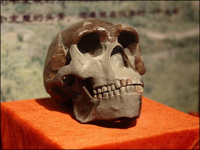 Possible new lead in Peking Man fossils mystery