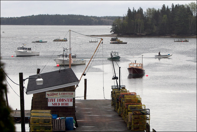Lobster hostilities lead to boat sinkings in Maine