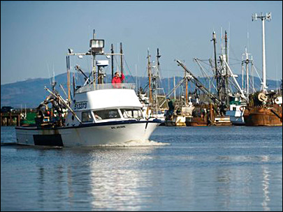 Inspectors find invasive mussels on Oregon boats