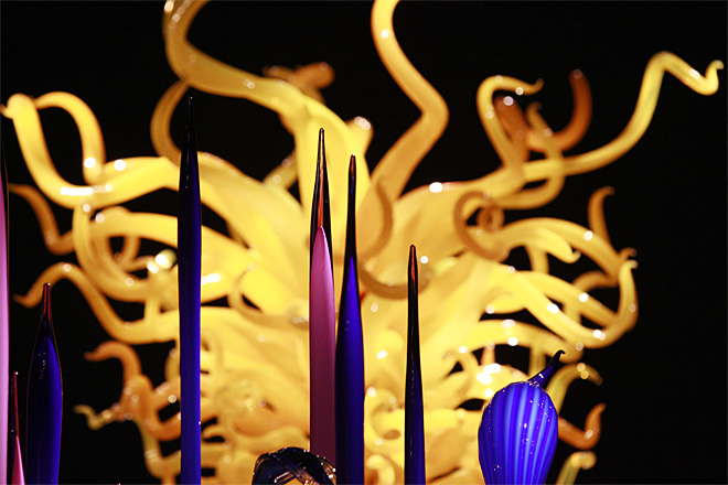 Seattle Center Chihuly