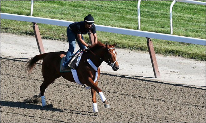 Triple Crown contender scratched from Belmont, retires