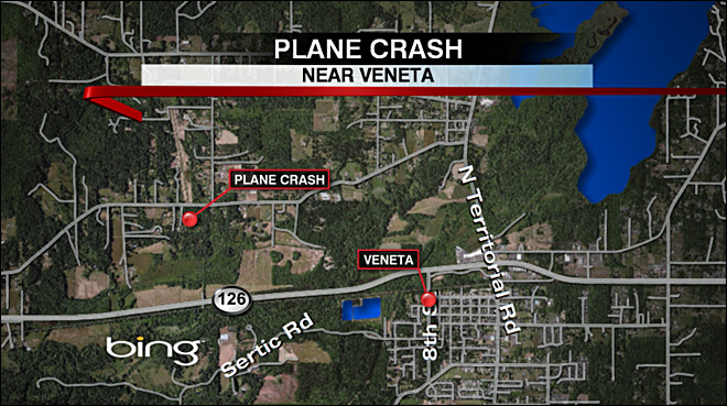 Initial report on fatal crash: Plane hit trees after engine stopped