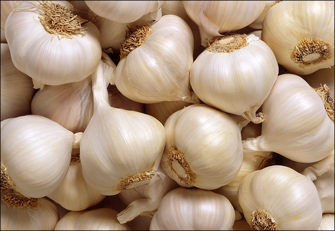 Men busted for stealing 9.5 tons of garlic