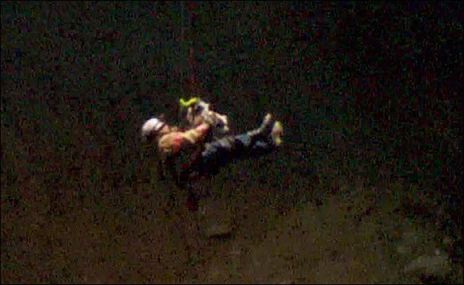 Firefighters rescue dog after she falls into quarry