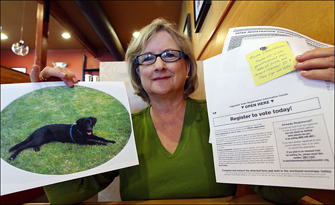 Dogs, dead people get election docs from nonprofit