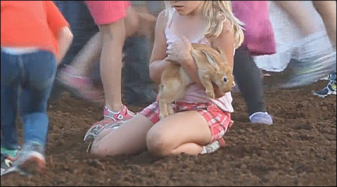 Animal scramble at rodeo: 'It's appalling, absolutely appalling'