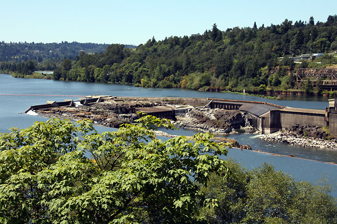 Willamette Falls in the Summer