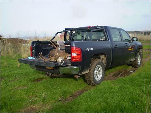 $3K reward in Oregon poaching case
