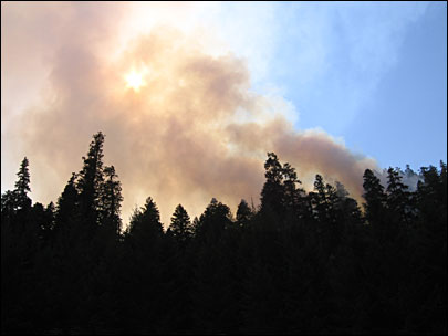 Oakridge-area fires fill valley with smoke, close roads and trails