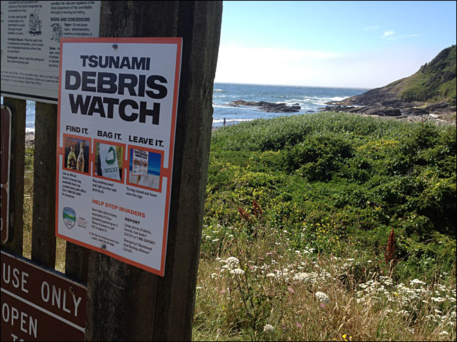 Sign up to help clean up tsunami debris