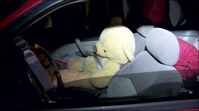Teddy Bear In HOV Lane