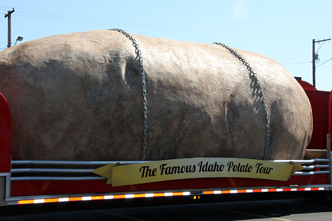 Holy potato! GIANT spud shows up at Portland Fred Meyer