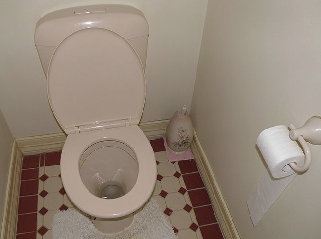City appeals for million-person toilet flush to unclog sewers