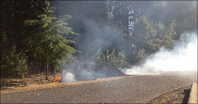 Downed power lines spark grass fire