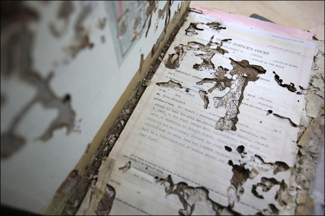Insects destroy Idaho county&#39;s historic documents