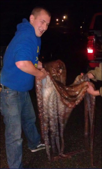 Octopus hunter: 'It's no different than fishing'