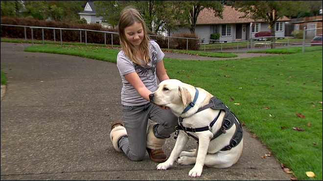 School says girl can't bring diabetes service dog to class